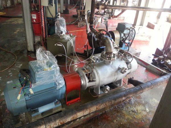 High Temperature Twin Screw Pump Up To 350 Degree Celcius